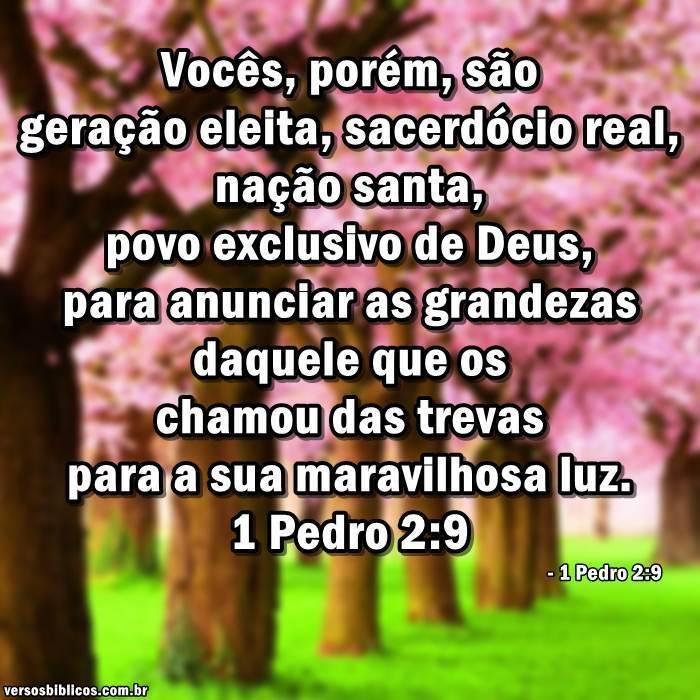 1 Pedro 2:9 5