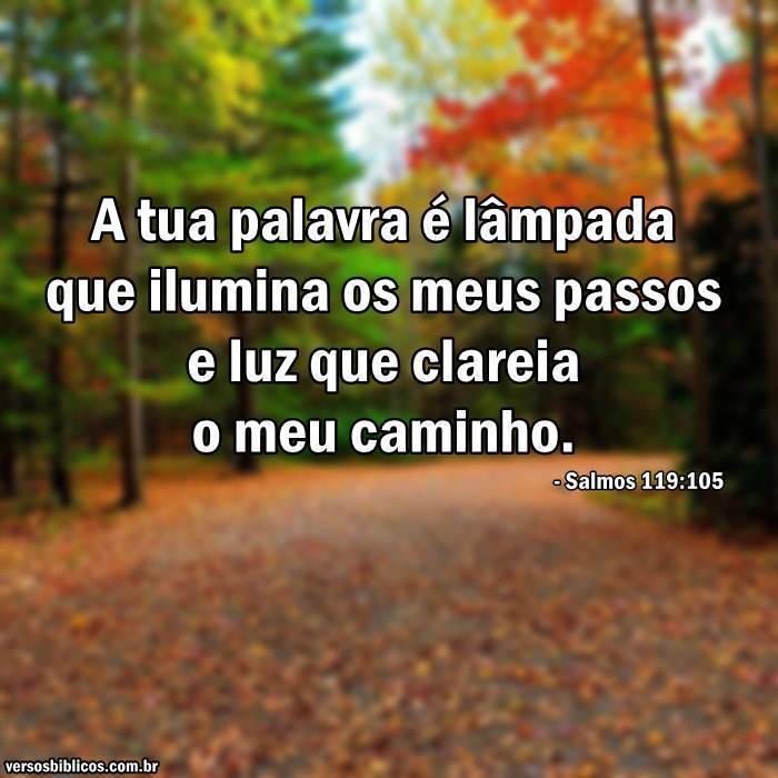 Salmos 119:105 55