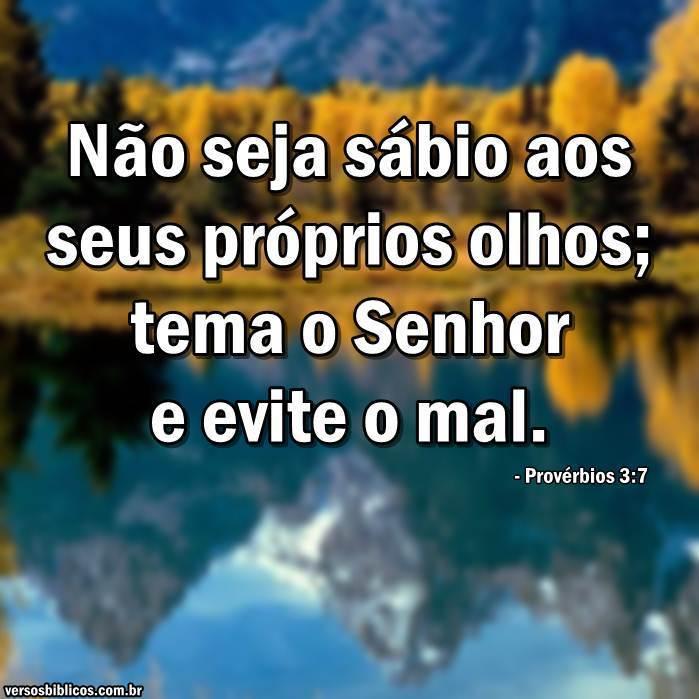 Provérbios 3:7 3