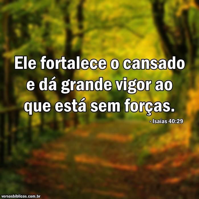 Isaías 40:29 12