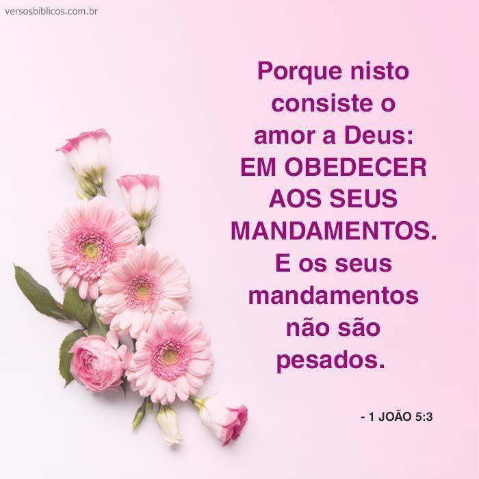 Obedeça os Mandamentos de Deus 20