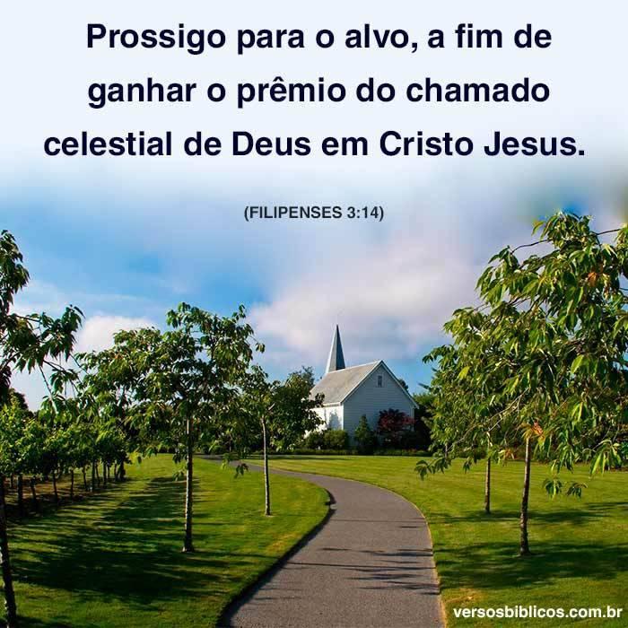 Prossigo para o Alvo, O Chamado Celestial 14
