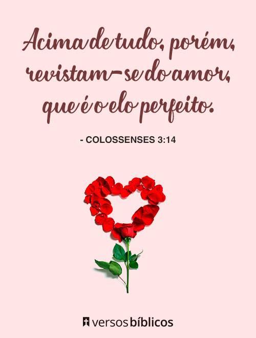 Versículos de Amor 6