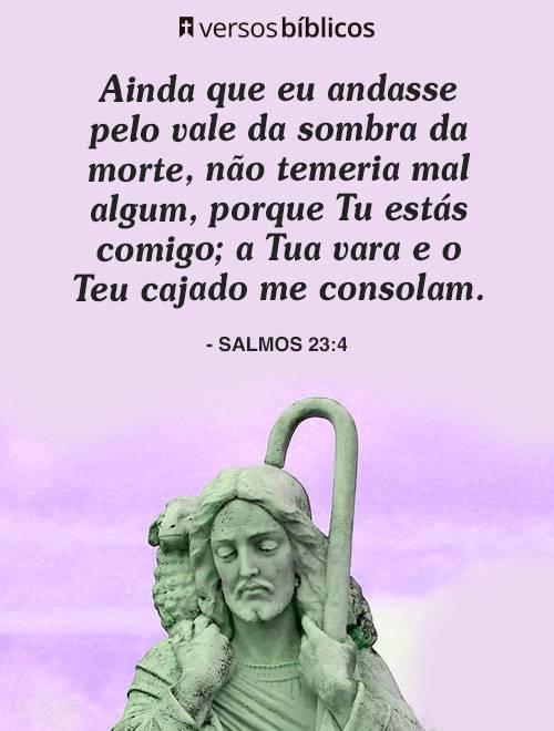 Versículos de Salmos com Orações e Conversas com Deus 11