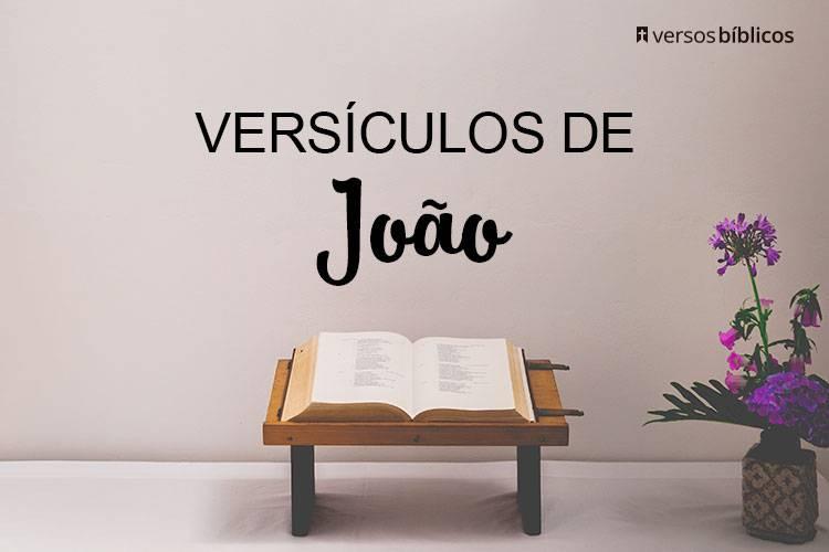 Versículos de João que falam sobre o Ministério de Jesus 35