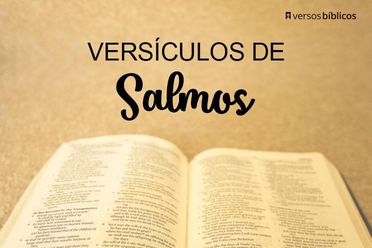 Versículos de Salmos com Orações e Conversas com Deus 21