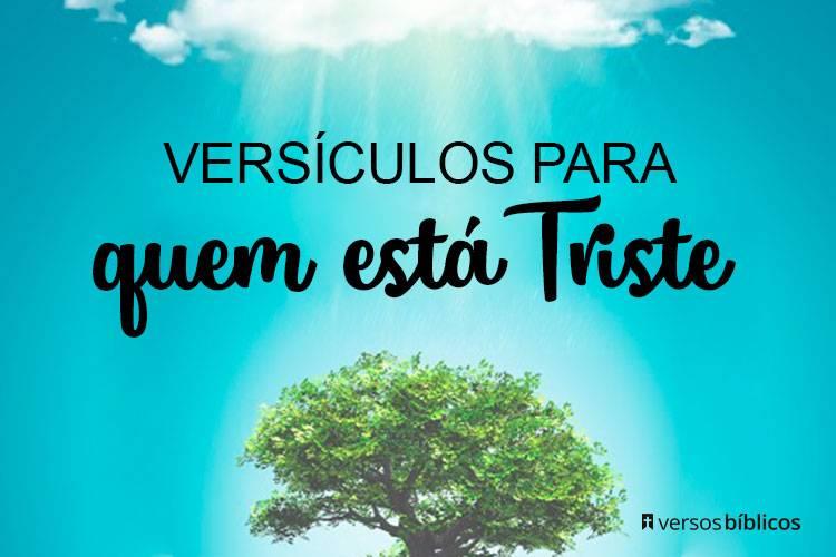 20 Versículos para quem está Triste 13