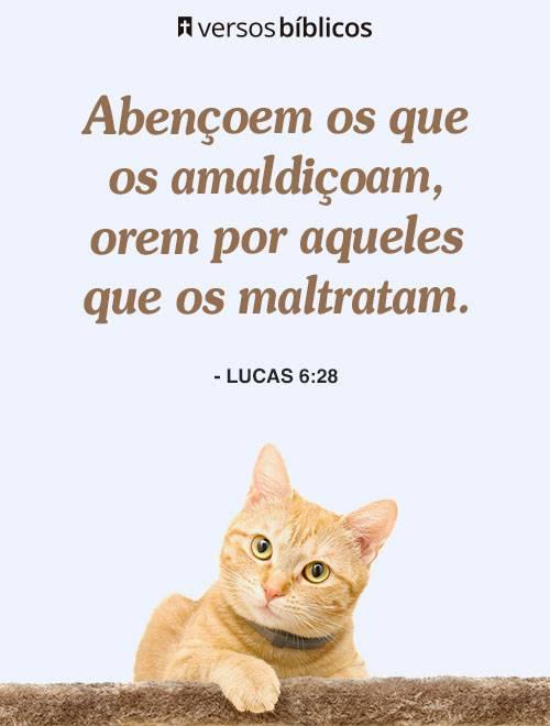 Versículos de Lucas cheios do Amor de Deus 4