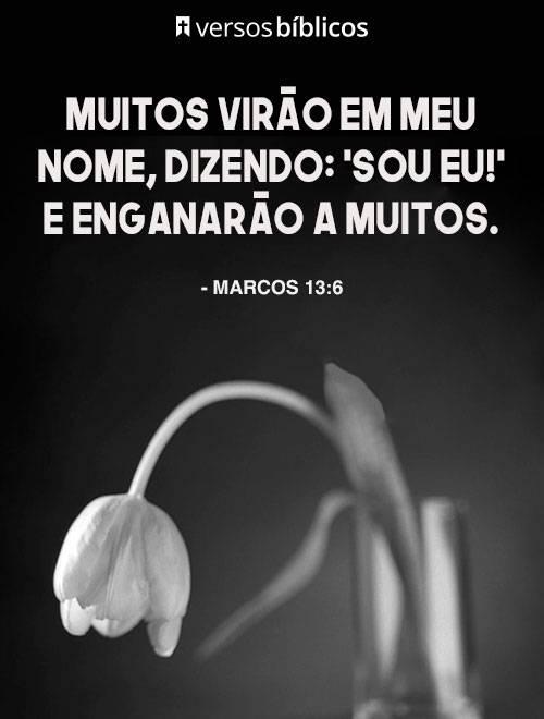 Versículos de Marcos cheios de Fé e Sabedoria 2