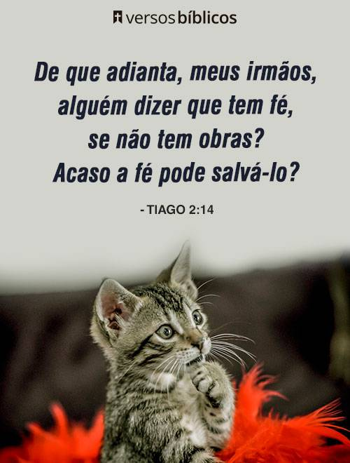 Versículos de Tiago 3