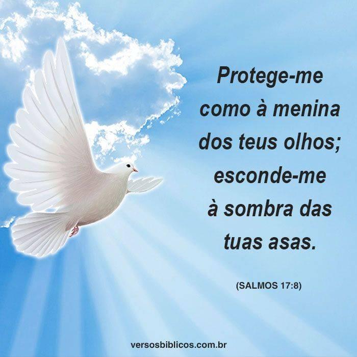 Versículos De Proteção Para Mostrar o Quanto é Guardado Por Deus 3